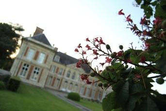 Château derrière une branche Lamas du Parc, Château de Courcelles-sous-Moyencourt