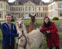 devant le château lamas du parc, Château de Courcelles-sous-Moyencourt